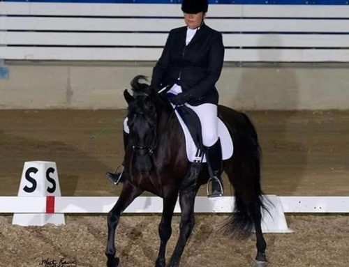 Deadline Extended until October 31st for the TWHBEA World Versatility Virtual Dressage Show