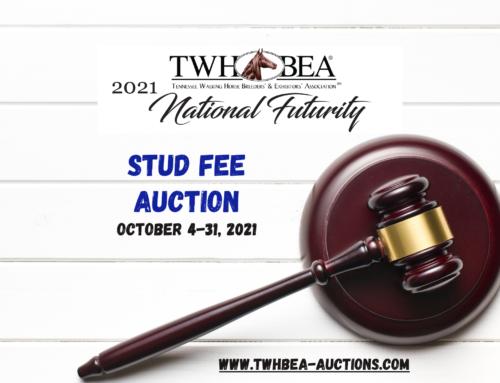 2021 National Futurity Stud Fee Auction
